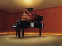 C5X Seitenansicht Konzertsaal