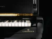 Concert 8 - Detailansicht C. Bechstein Logo