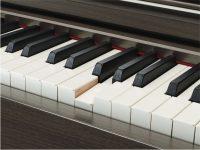 Yamaha Clavinova CLP645 Dark Walnut Detailansicht Holztastatur