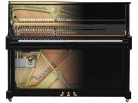 Transacoustic 2 System - Detailansicht