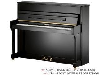 W.Hoffmann V112VSP Piano 112cm Vario Set